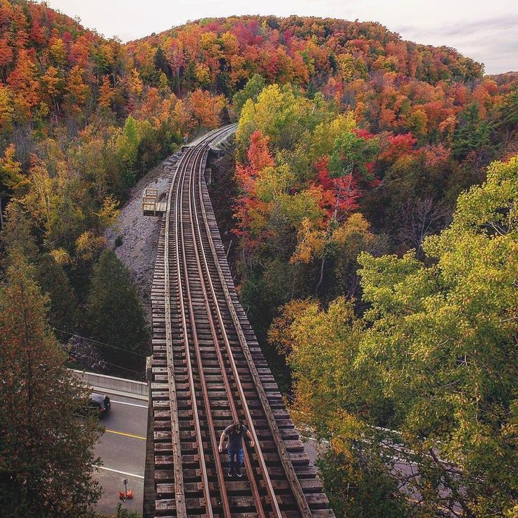Walkin the tracks   Photo taken by @aerial_atom_photography Nice work buddy! . . . . #dronephotography #dronestagram #droneoftheday #aerial #dronepilot #quadcopter #droneporn #dronesaregood #dronelife #potd #picoftheday #dronesdaily #photooftheday #dronegear #viewfromabove #nature #naturephotography #thecreatorclass #dji #dronefly #dronenerds #droneheros #phantom #photography #droneboost #dronejunkie #fall #trees #train #ontario
