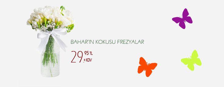 Çiçek Sipariş İstanbul,Çiçek Dükkan,Online Çiçek Gönder