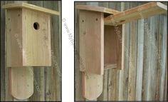 Free Bluebird House Plans | How to Build a Bird House