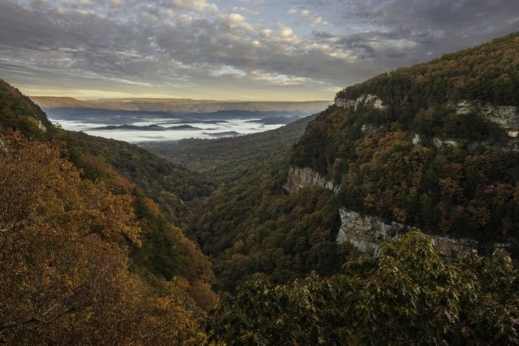 Fall at Cloudland Canyon State Park Georgia [2246X1498][OC] Ben Thomas #reddit