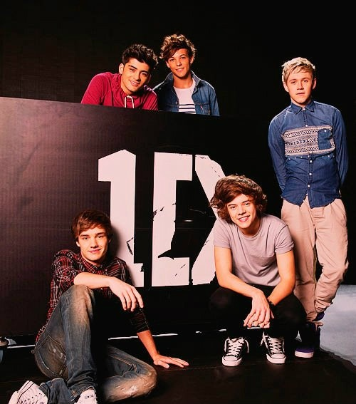 Direction3, Direction Infection, Boys, One Direction, Directioners 3, Direction Obsession, Harry Style, Direction 3, Onedirection