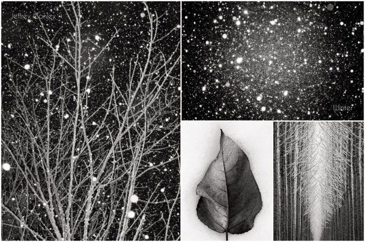 Jeffrey Conley – 'Winter'