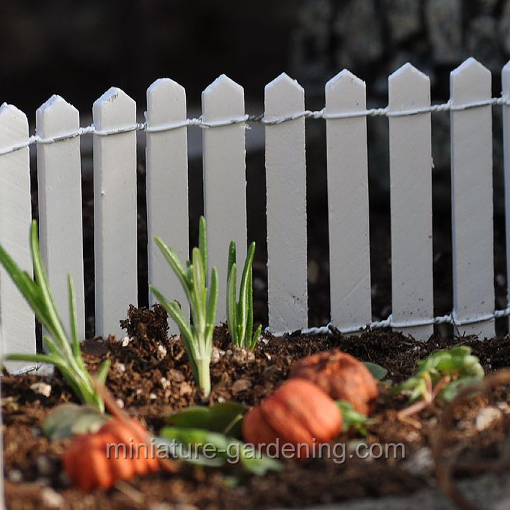 From Miniature Gardening · White Wood Picket Fence