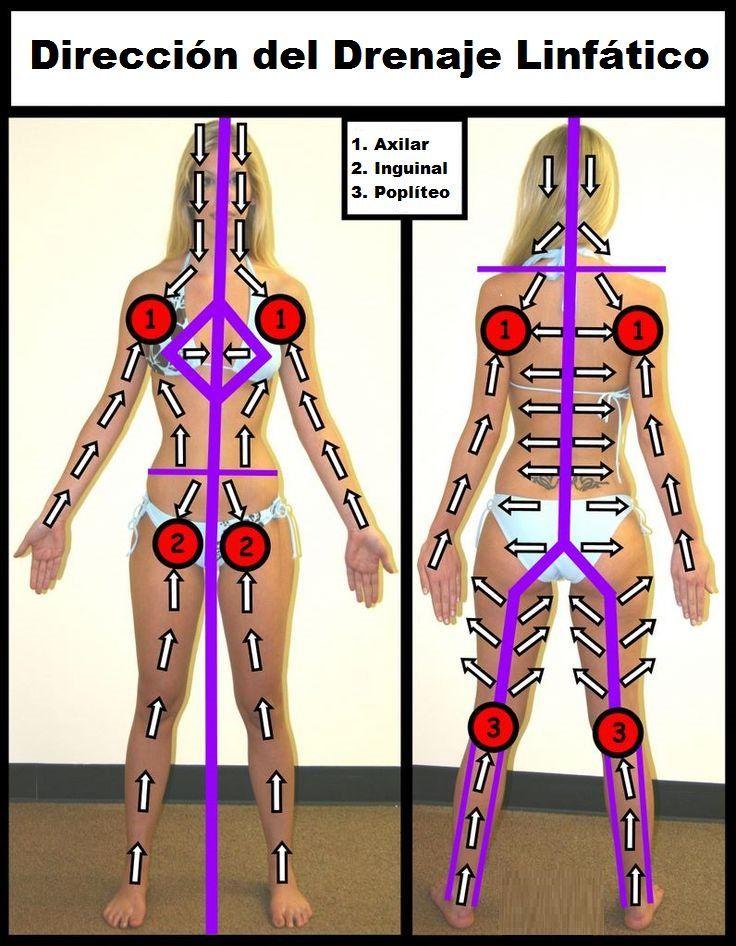 dirección correcta para un drenaje linfático en el cuerpo