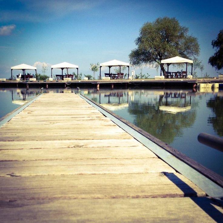 Szóval,+most+jöttem+rá,+mekkora+nagy+bajba+hoztam+magam+pont+ma,+Valentin+napon+azzal,+hogy+a+Tisza-tó+tíz+legszebb+helyét+szeretném+megmutatni+Nektek!+Nincs+10+legszebb+hely+itt,+a+tónál,+mert+ha+nyitott+szemmel+járunk,+annyi+szépséget+látunk,+hogy+nehéz+tíznél+abbahagyni.+ +Igazából+nem+is+tudom,+hol+kezdjem,+ezért+aztán+a...