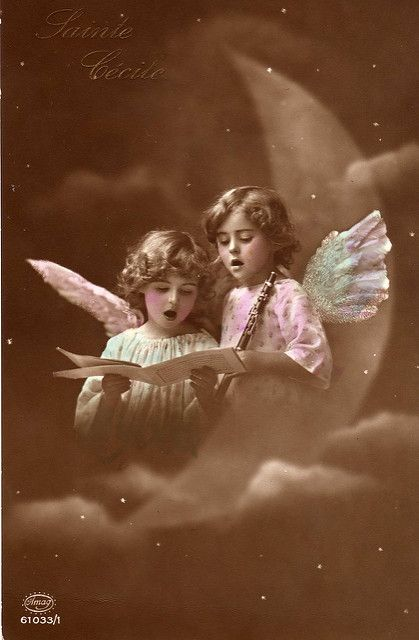 Vintage Postcard ~   Postcards from my collection. Please fe…   Flickr