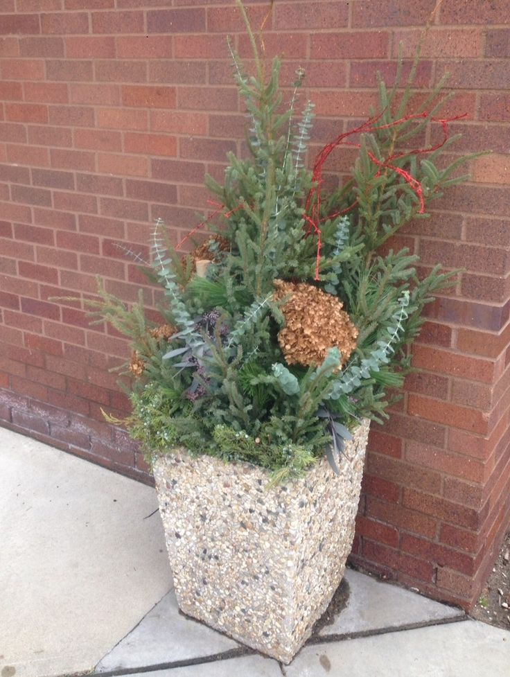 fall and winter planters
