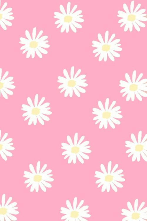 wallpaper pink cute flowers flores rosa lindo fondo de pantalla