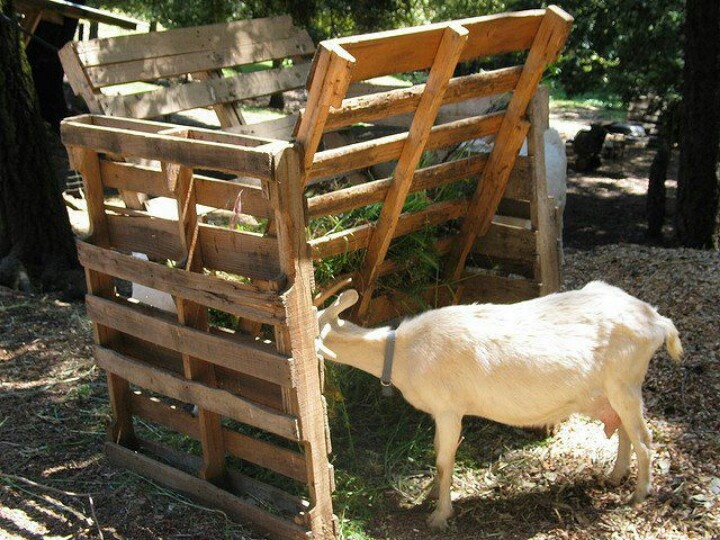 Hay Rack Out Of Pallets Goats Pinterest Pallets And Hay