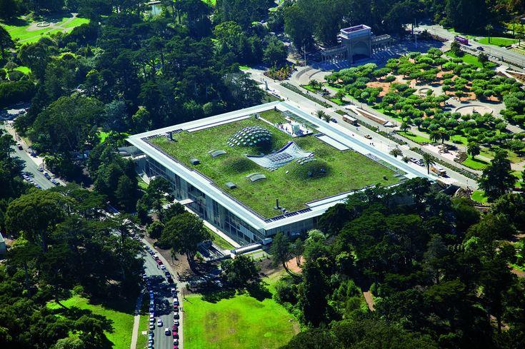 Gallery of California Academy of Sciences / Renzo Piano Building Workshop - 30