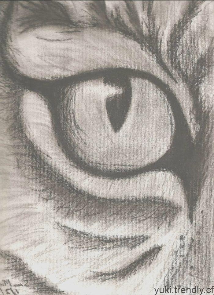 Une Idee De Dessiner Dans Des Yeux De Charbon De Bois Dessin Facile A Reproduire Easy Charcoal Drawings Cartoon Drawings Of Animals Cute Cartoon Animals
