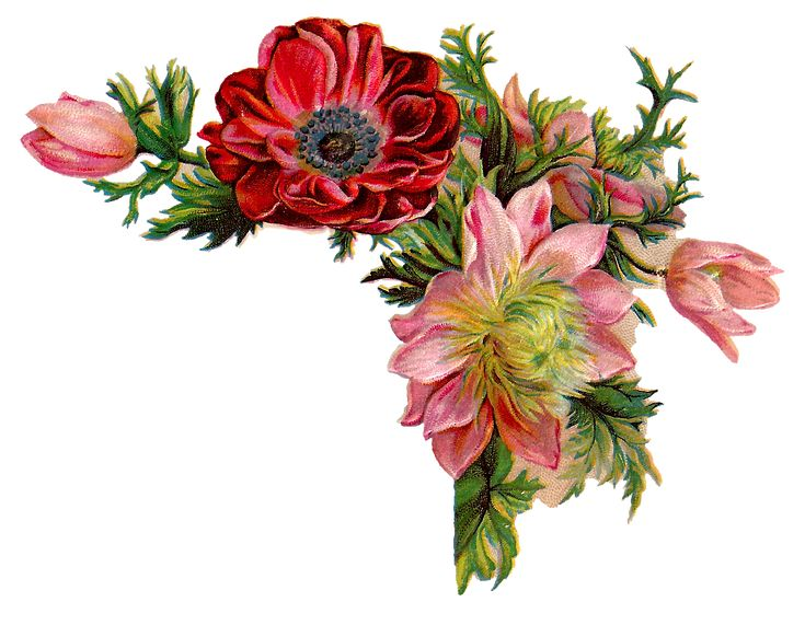 antique images free digital flower images of corner design with red and pink flowers