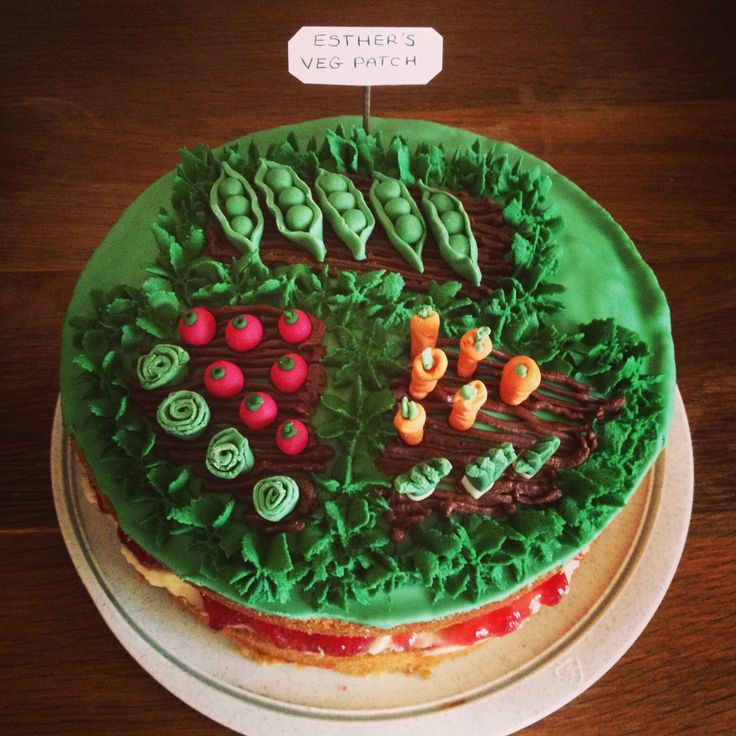 Vegetable patch birthday cake ... Let s talk food ...