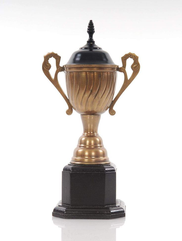 Best 25 Old Trophies Ideas On Pinterest Trophies And