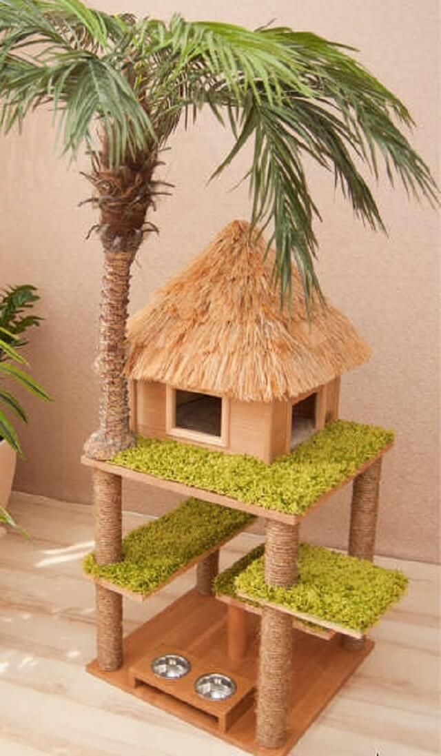 Katzenhaus mit Palme