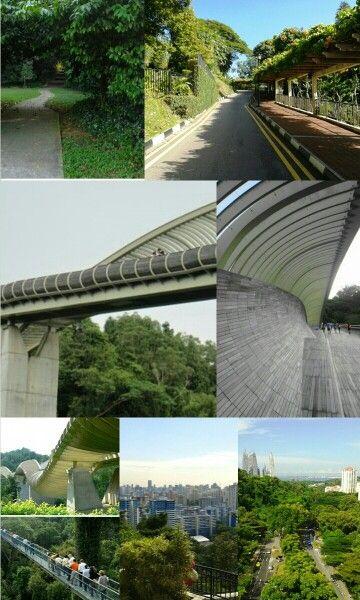 jembatan penyebrangan mungkin sudah biasa tapi jembatan yang satu ini sangatlah berbeda. HENDERSON FABER dengan bentuknya bergelombang menghubungkan MOUNT FABER PARK dengan TELOK BLANGAH HILL PARK.. taman ini terdapat dijantung kota singapore #SGTravelBuddy
