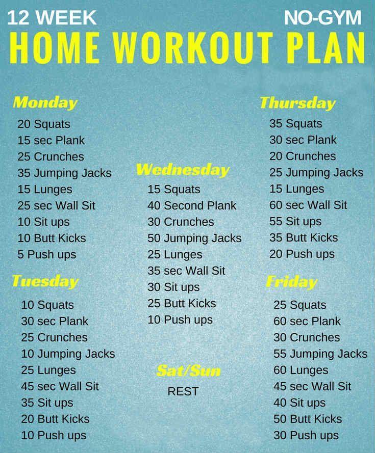 fitness program for beginners pdf
