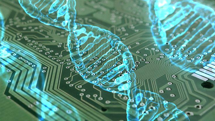 Científicos británicos afirman que es posible crear un tipo de computadores completamente nuevo que procesen datos a una velocidad enormemente rápida usando procesadores hechos de moléculas de ADN.