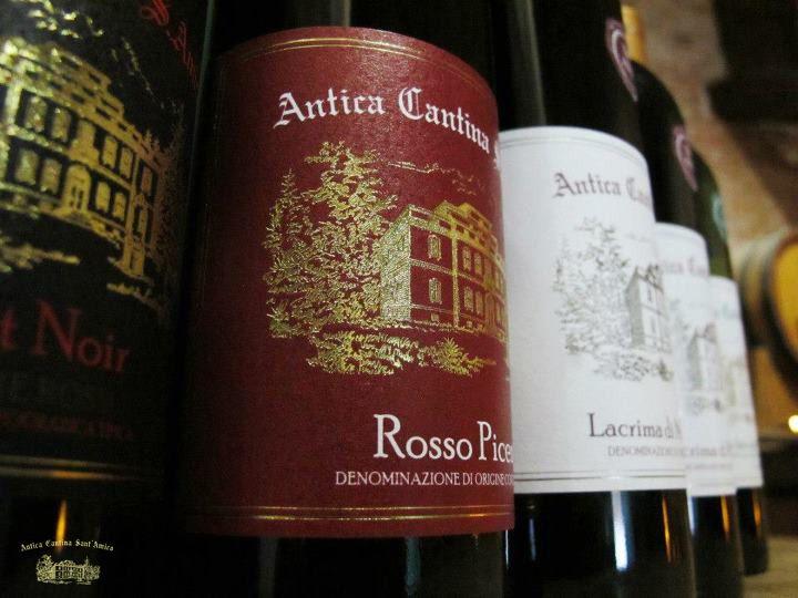 Vini DOC Italiani - Italian Fine Wine