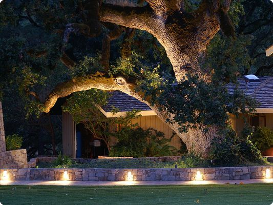30 best landscape lighting and more images on pinterest placing landscape lighting around your home gives garden interest at night aloadofball Choice Image