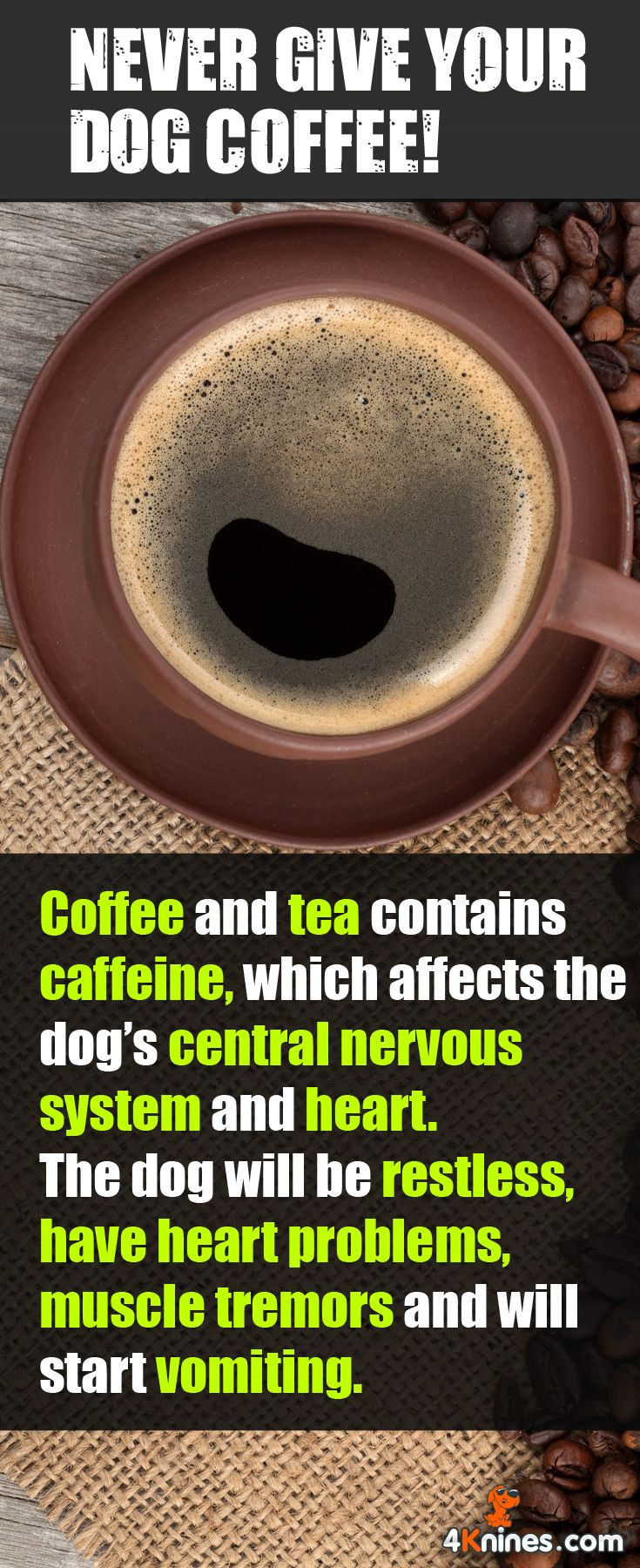 There is also caffeine in coffee grounds, cola and energy