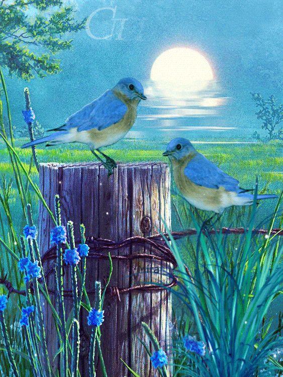 детали интерьере картинки ретро с добрым утром с цветами и птицами гифки формы