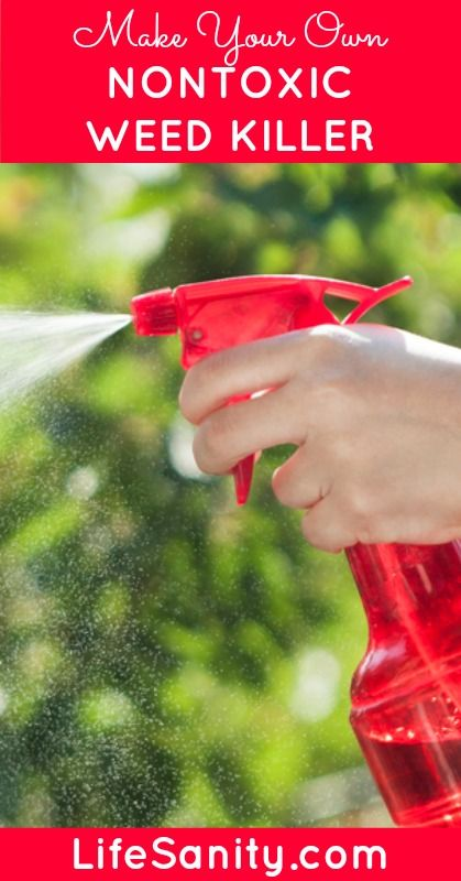 Skip the chemicals on your garden and yard and try this DIY Weed Killer instead. Via Life Sanity