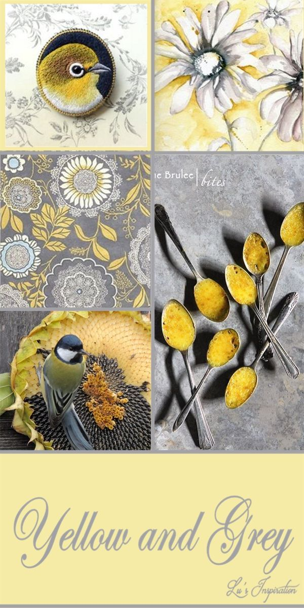 YELLOW AND GRAY ~~
