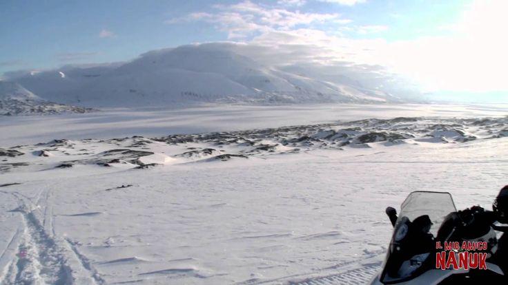 """""""Il mio amico Nanuk"""" è un'appassionante avventura nelle sconfinate, bellissime ma ostili terre dell'Artico Canadese. Protagonisti Luke, ragazzo di 14 anni e Nanuk, un cucciolo di orso. Al cinema dal 13 novembre #film #cinema #Nanuk #OrsoPolare #kids"""