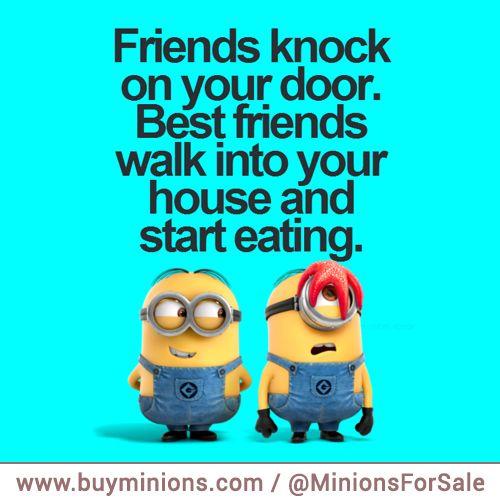 Minion Friendship Quotes: Best 25+ Minions Friends Ideas On Pinterest