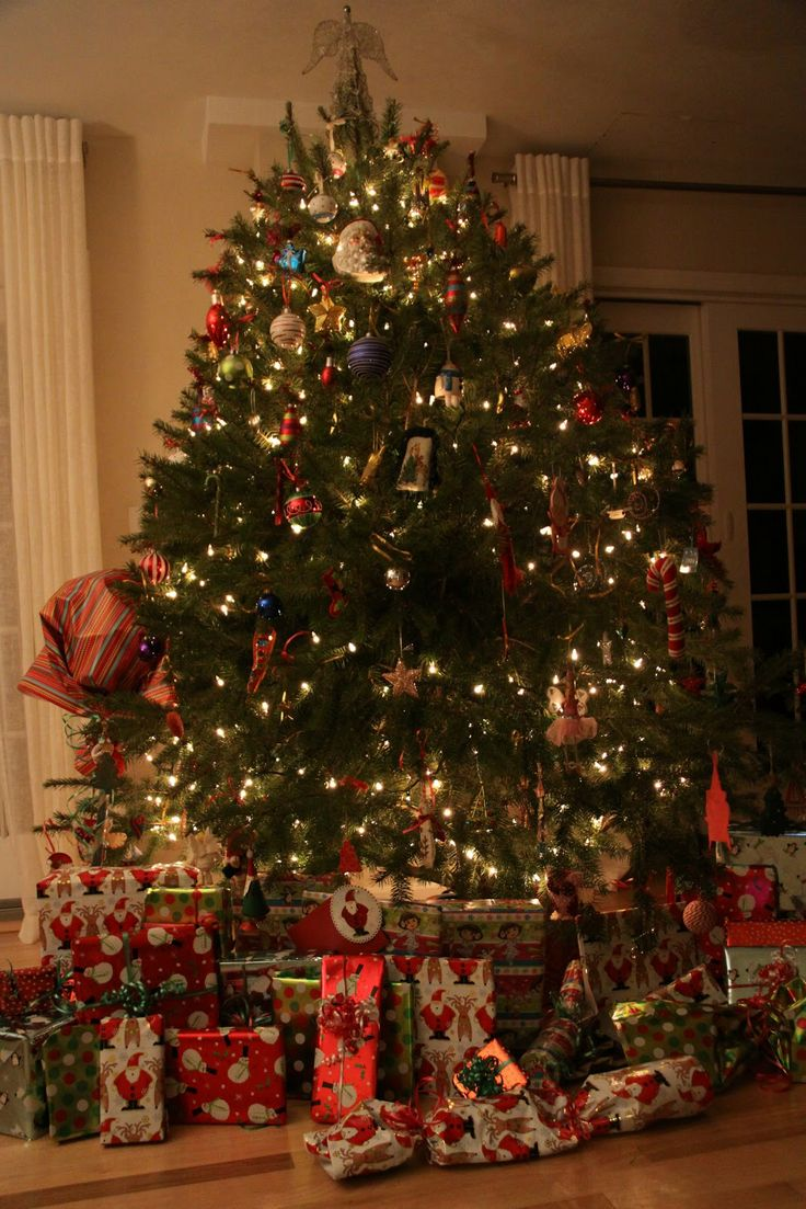 Nice Christmas Trees 41 best chirstmas tree images on pinterest | christmas time, merry