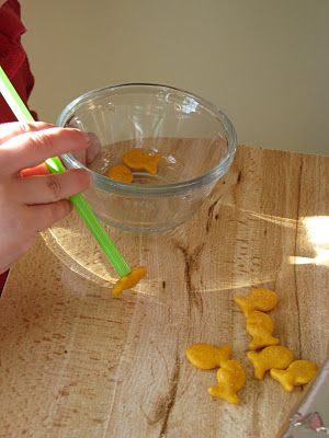 Catching Goldfish with straws! Visit pinterest.com/arktherapeutic for more #oralmotor therapy ideas