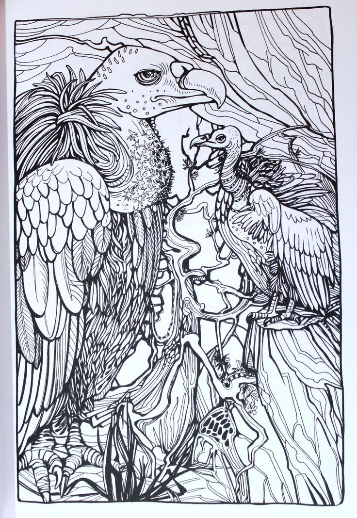 1650 Best Images About Coloring Pages First Edition On