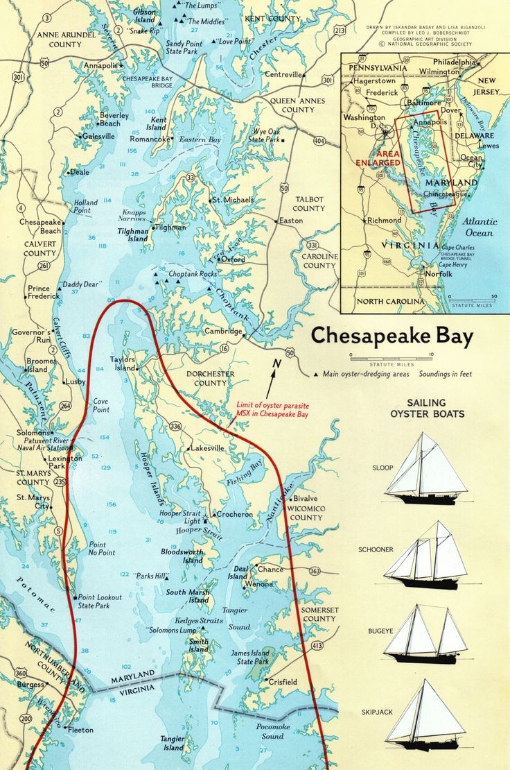25 best ideas about chesapeake bay fishing on pinterest for Chesapeake bay fishing map