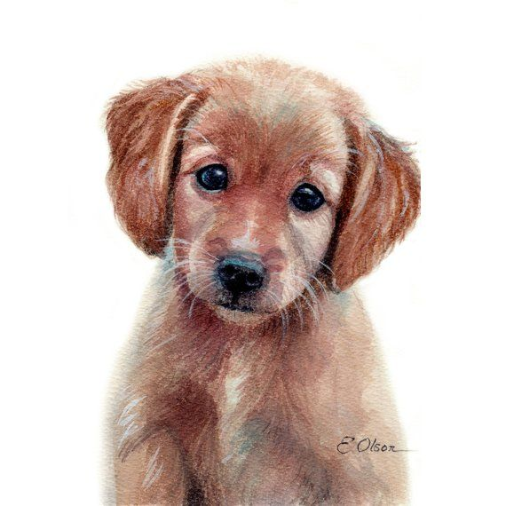 Watercolor Puppy Golden Puppy Fine Art Print Nursery Decor Dog Art Baby Animal Prints Nursery Wall Art Golden Retriever Puppy Prints Baby Animal Prints Dog Art Puppy Art
