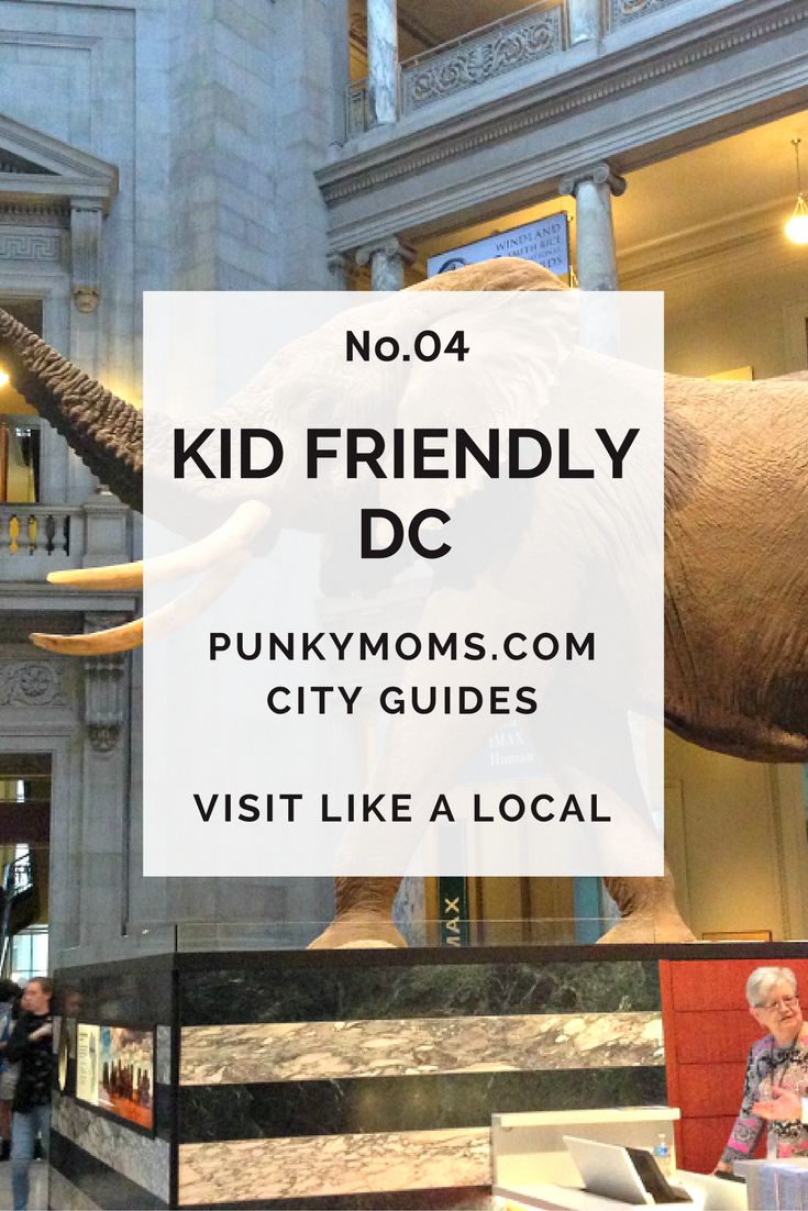 Kid friendly Washington D.C. Guide written by the wonderful Tina from DC With Kids.