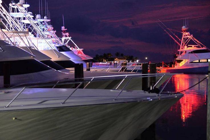 Viking Yacht Company  ·  All lit up. #VikingYachts #LeadingTheIndustry #MadeInAmerica #NotTraditionalChristmasLights
