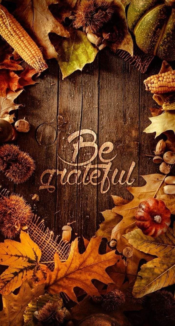 Churchsource Churchsource Happythanksgivingmessages In 2020 Iphone Wallpaper Fall Fall Wallpaper Thanksgiving Wallpaper