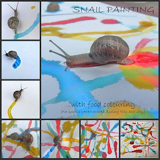 How cool are these snail paintings?  Fun with Science and Art!
