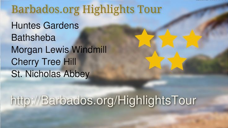 See why visitors were thrilled with the stops on their #Barbados Highlights Island Tour.