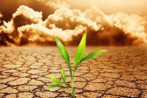 mitigasi adaptasi perubahan iklim