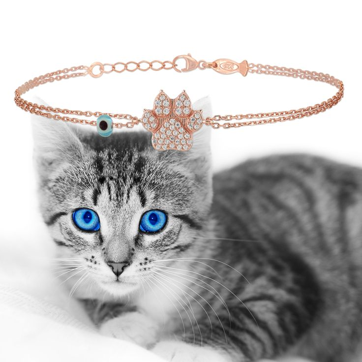 We love animals ❤️💕❤️       #cat #paws🐾 #braclet #silverjewellery #silverbracelet #silver #jewellery #jewelry  #catpaws #animals_in_world