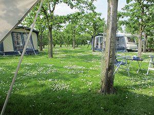 Camping de Hoge Kuil in Culemborg voor kamperen op het platteland