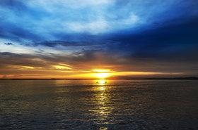 Swimming at dusk