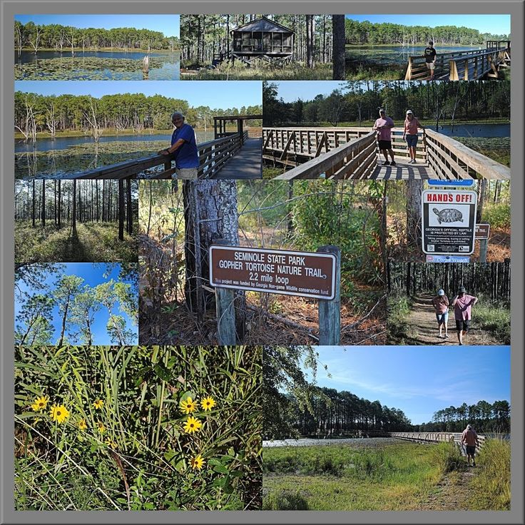 MY QUALITY TIME http://www.myqualitytime.net/2016/11/a-hike-at-seminole-state-park-georgia.html #Seminole State Park #Georgia