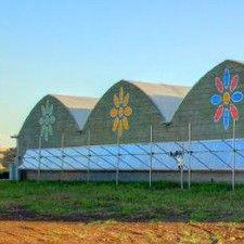 Harvest Community Argyle TX, Harvest Homes Argyle Texas