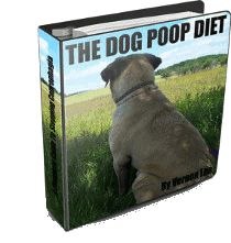 Yuck, my dog eats poop! Some info to deal with this issue.