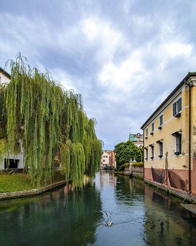 I Buranelli a Treviso sono un'istituzione: per gli adolescenti è un luogo di ritrovo, per molte giovani coppie il posto del primo bacio, per gli adulti un tranquillo angolo della città dove sorseggiare un bicchiere di vino.  Foto di @federicograziati scattata con Canon EOS 80D + 10-22mm Dati exif: Tempo 1/200 Diaframma f/8 ISO 100  #fromGrazEyes #igerstreviso #igersveneto #igersitalia #treviso #canonofbeauty #Canontakeover #EOS #80D #IOX