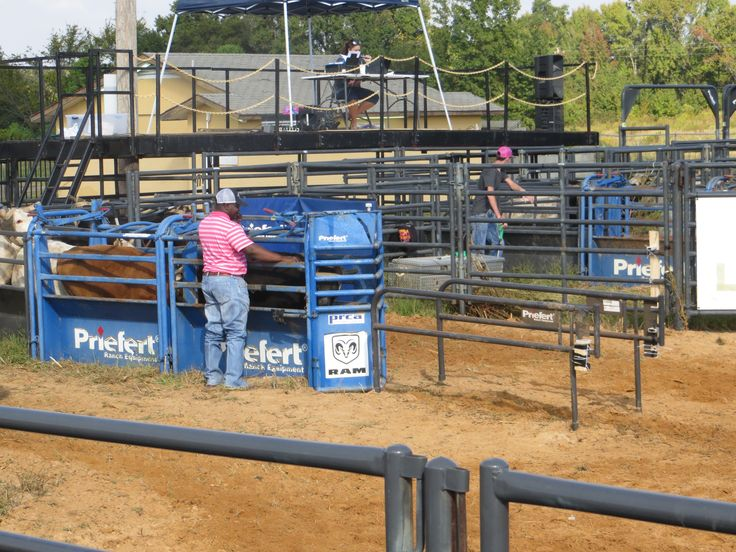 Mt Pleasant, TX Priefert Arena https://www.priefert.com/products/roping-and-rodeo-equipment