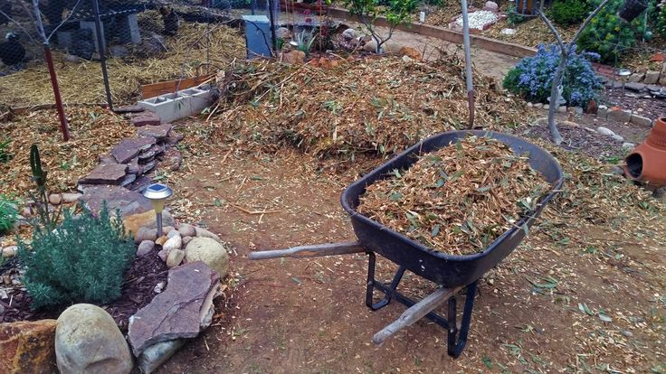 Ain't no Party like a Free Mulch Party! Learn how to get unlimited supplies of free mulch for your garden!